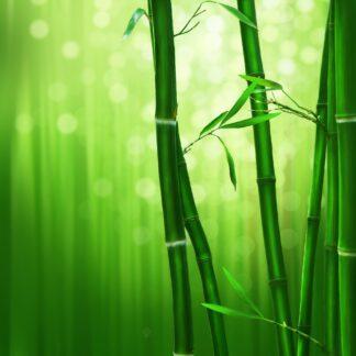 Bambugarn